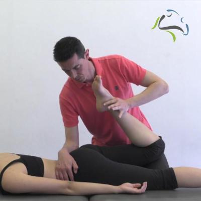 flexion de la rodilla en decubito prono carlos lopez cubas neurodinamica