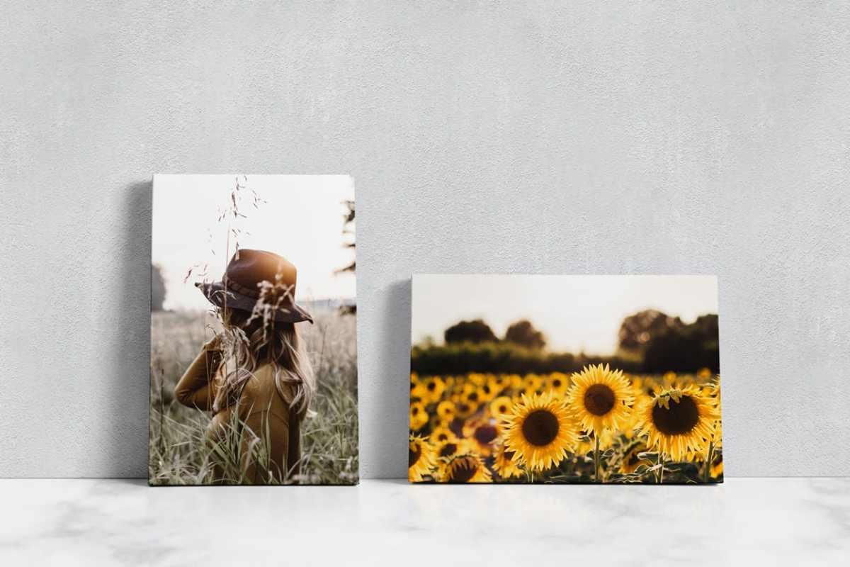 Mixed Canvas 3x2 - 2x3 Mockup