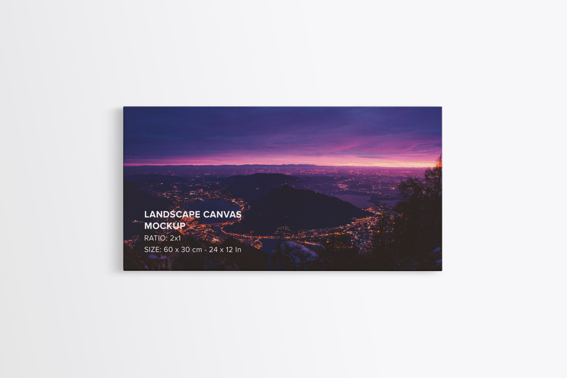 Landscape Canvas ratio 2x1 Mockup