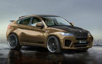 2014 BMW X6 MOwners Manual