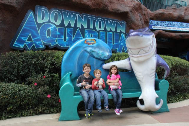 The Houston Downtown Aquarium is great for kids of all ages Carltonaut's Travel Tips
