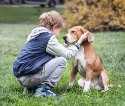 39571009 - two best friends - boy and his dog