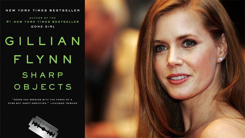 10-books-to-tv-shows-the-everygirl-sharp-objects-1