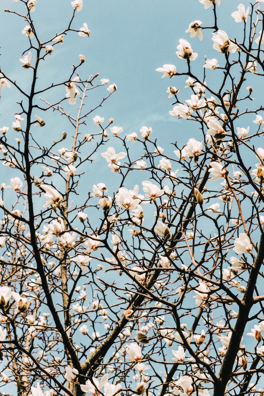 aprilwrapup (163)