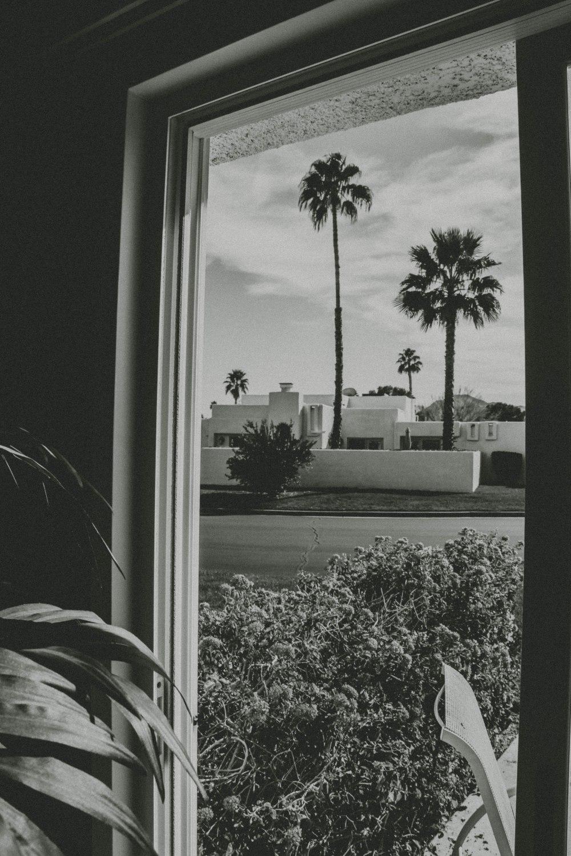 palmspringsblog (69)
