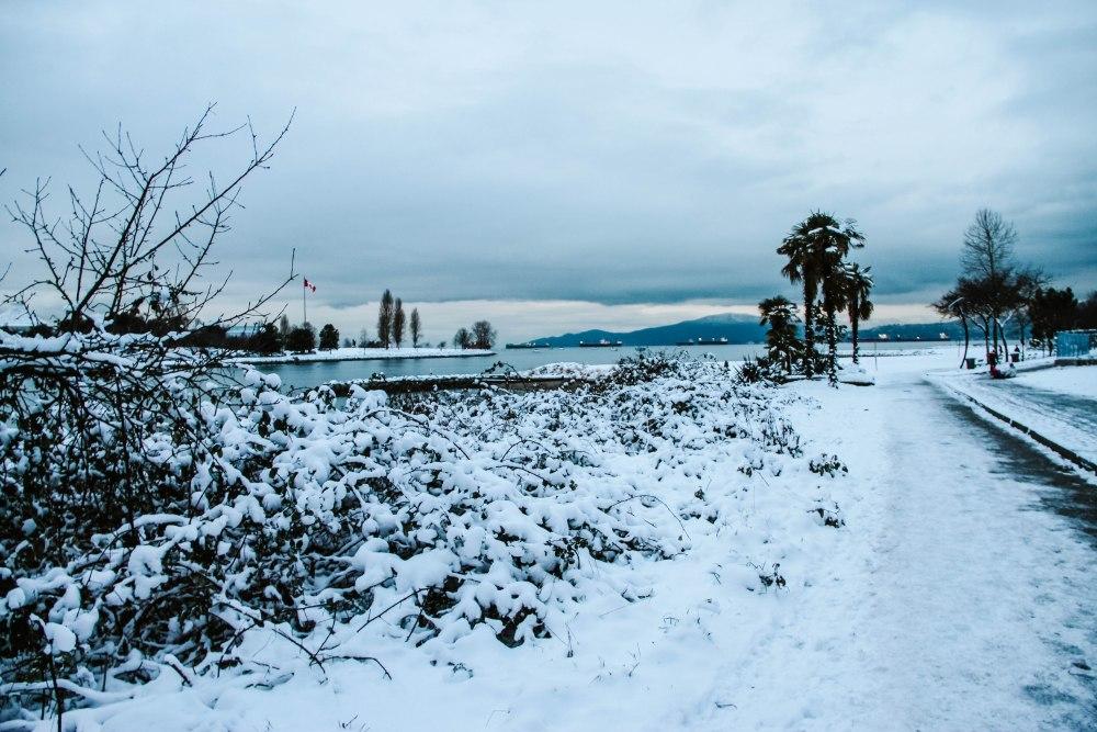 snowblog (8)