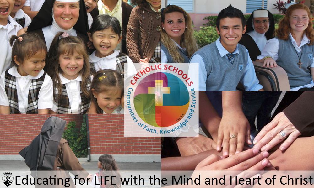 Celebrating Catholic Schools Week – The Rose