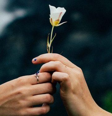 El amor tan lindo y necesario