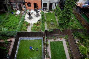 Aerial View of BK Backyard Set-up
