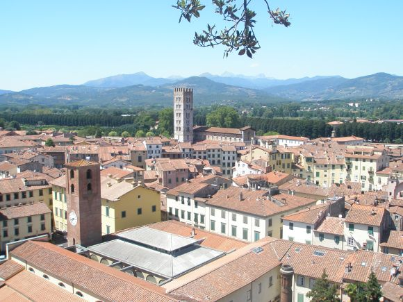 View from the top of The Guinigi Tower, Lucca, Italy