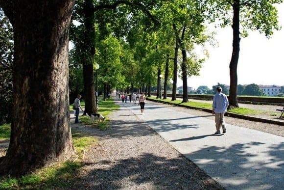 Lucca city walls pedestrian promenade, Italy