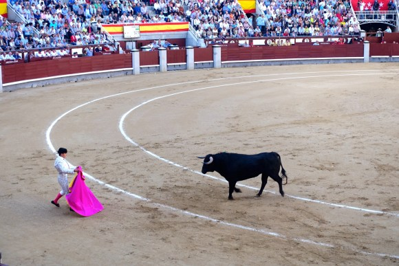 Bullfight at Plaza de Toros, Madrid