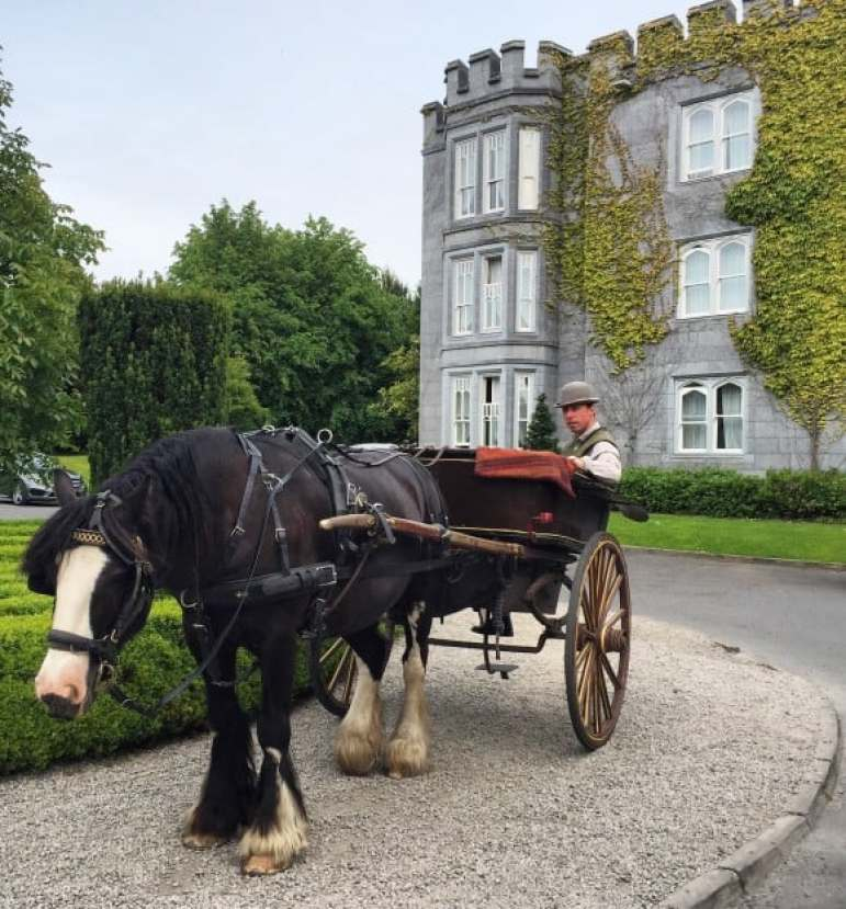 Pony and trap at Dromoland Castle, Ireland