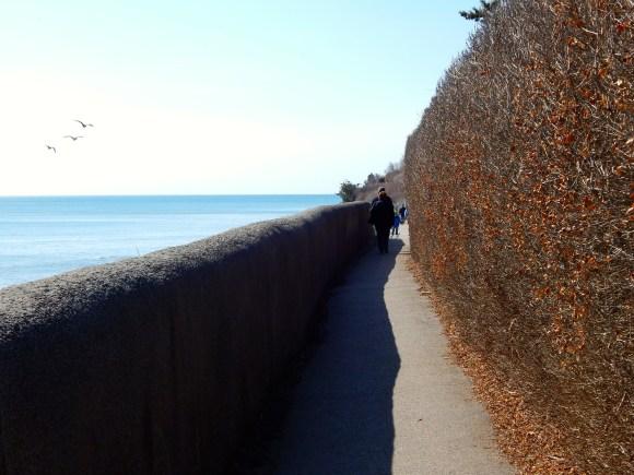 Narrow Sidewalk, Cliff Walk