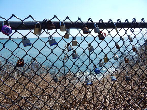 Many of the Surrounding Fences had Love Locks