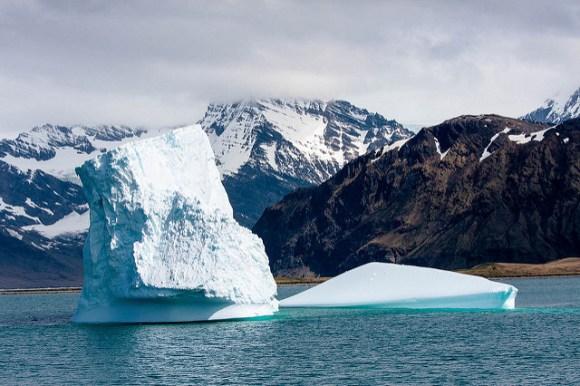 Icebergs near Grytviken Harbour (Flickr: Outward_bound)