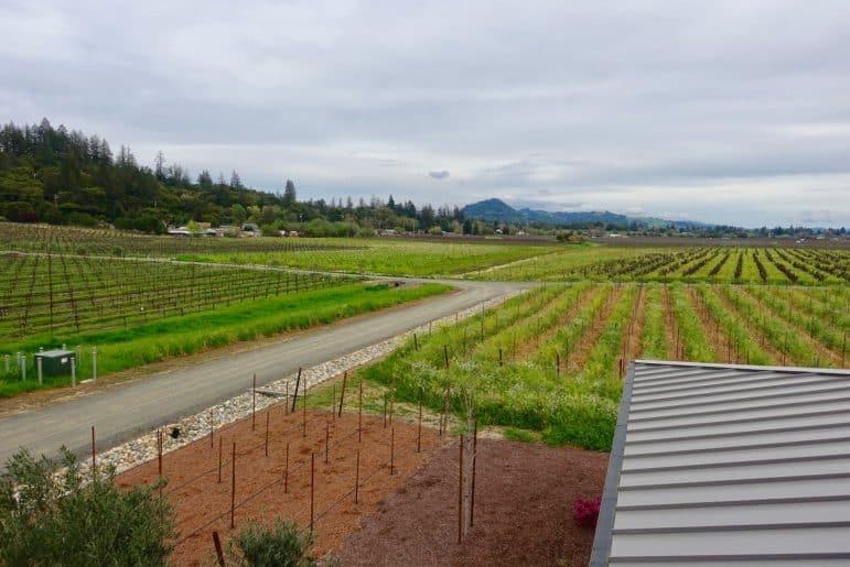 Comstock Winery - Sonoma Country - Image Carmen's Luxury Travel