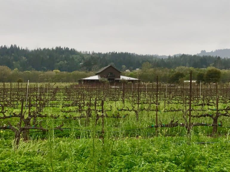 The Residence of Comstock Wine - Sonoma Country - Image Carmen's Luxury Travel
