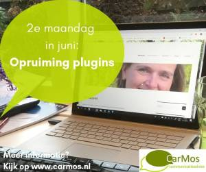 2e maandag in juni; opruiming plugins