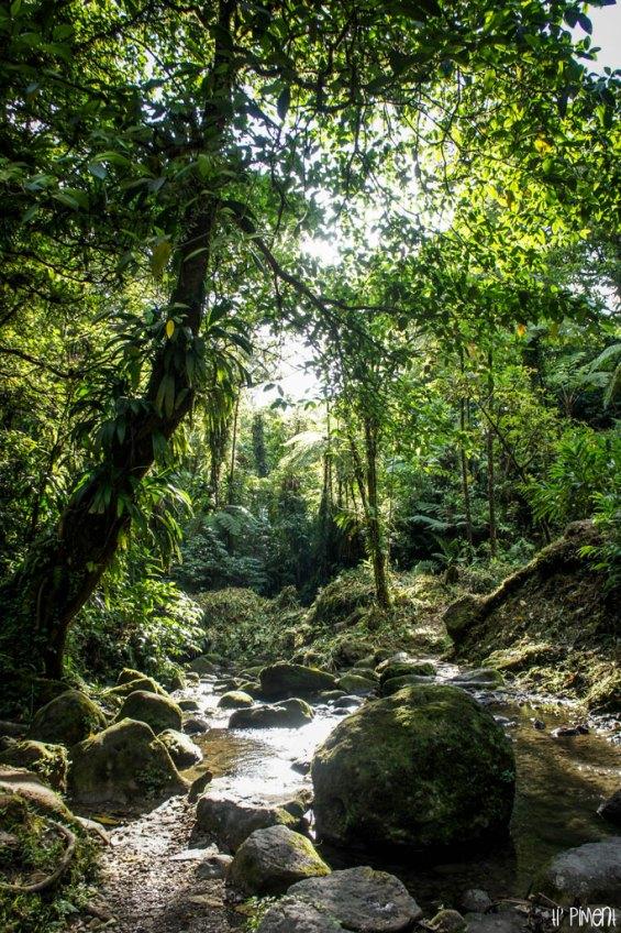 La rivière de la cascade saut Gendarme