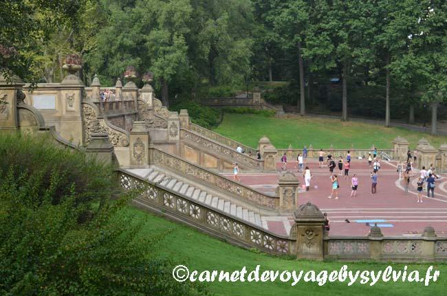 sport Central Park