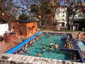 Thermes et bains de Budapest : mode d'emploi