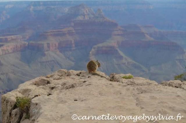 le Grand Canyon