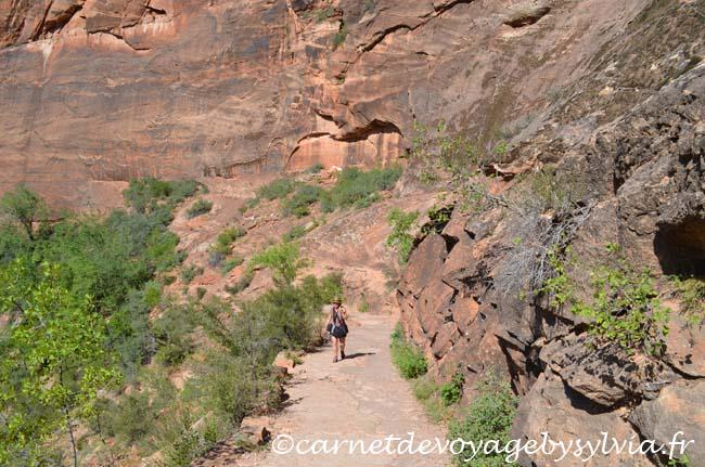 randonnée et sentiers de Zion