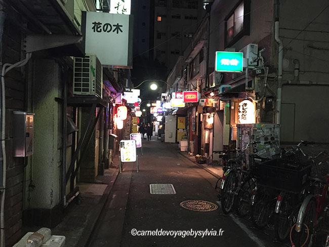 Golden Gai une sortie nocturne à Tokyo