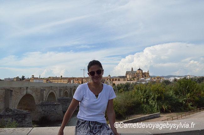 Vue sur Cordoba et son pont romain