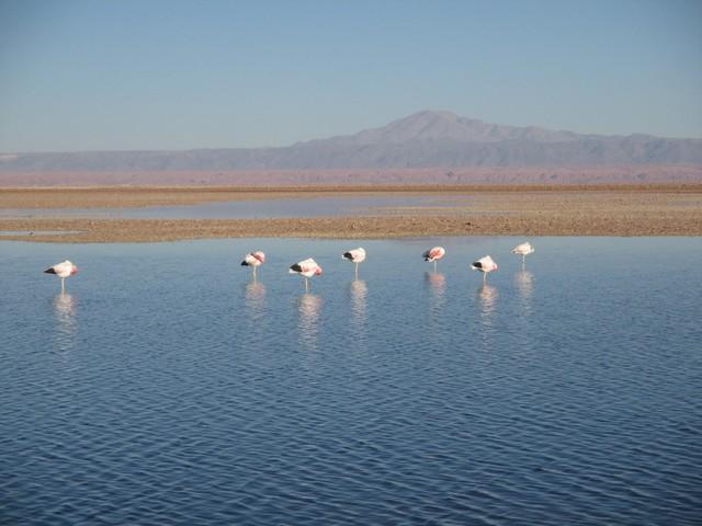 laguna Chaxar