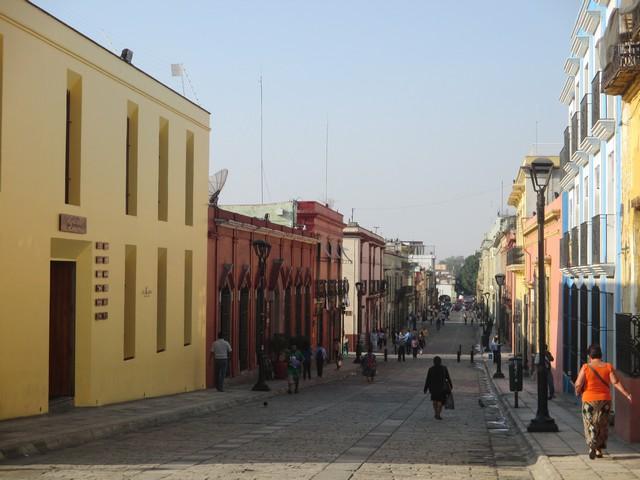 """Les """"champs Elysées"""" de Oaxaca"""
