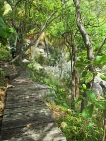 Chemin du bord de mer nail Bay