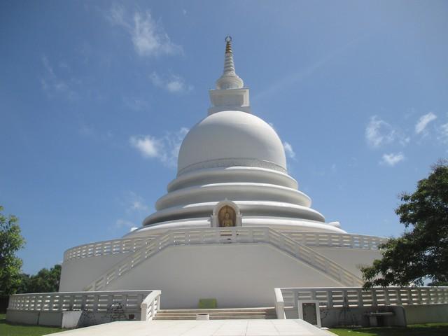 temple bouddhiste Jungle bay