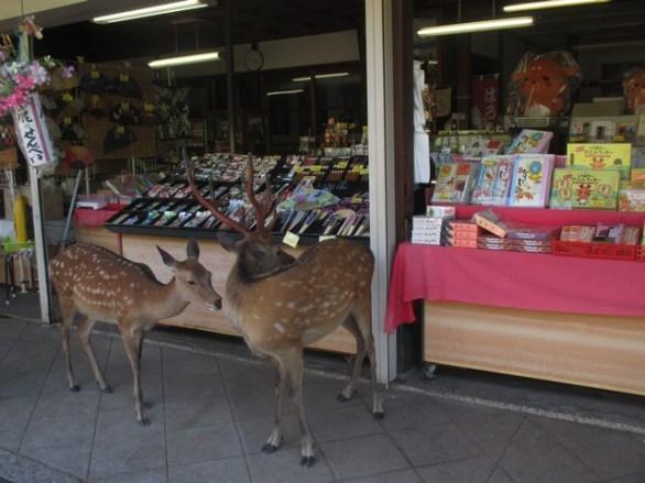 biches par de Nara