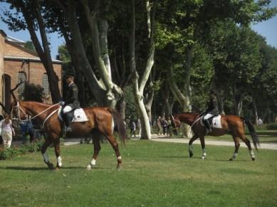 chevaux palais Topkapi Istanbul