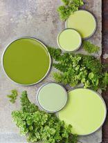vert pantone