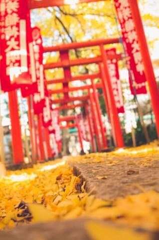 Zoshigaya Shrine, Tokyo
