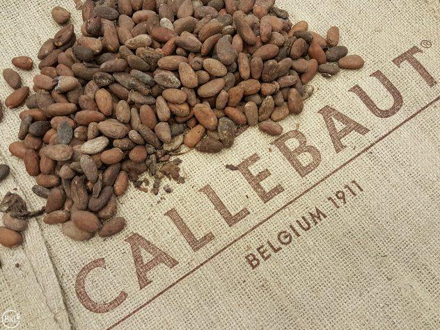 callebaut-009