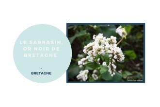 sarrasin-bretagne