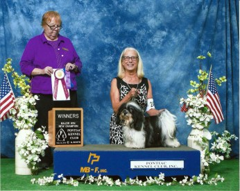 Maggie wins the Pontiac Kennel Club's Winners Bitch May 26, 2016 under Judge Betsy Dale in Kalamazoo Michigan.