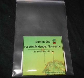 Drosera-aliciae-Samen klein