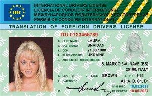 Получение международных водительских прав: пошаговая схема ...