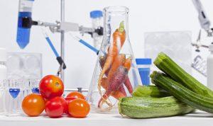 CARO Food Testing