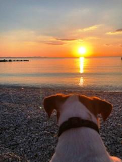 Cosmos Sunset Zadar
