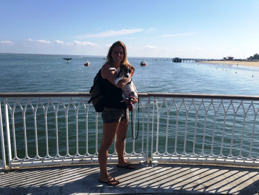 Arcachon avec chien voyage