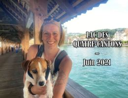lac 4 cantons avec chien