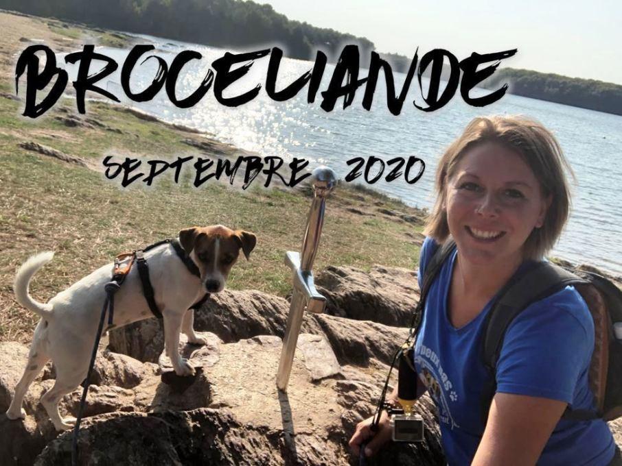 Brocéliande chien Bretagne