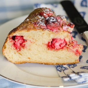 Brioche - Caro Blackwell Photography