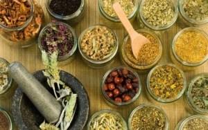 hierbas-y-plantas-medicinales